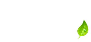 logo-maisons-bois-nath-blanc